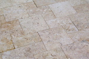 Shell Pavers Pictures To Pin On Pinterest Pinsdaddy